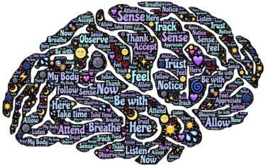 脳をダマして、知らない間に英語を上達させる方法!