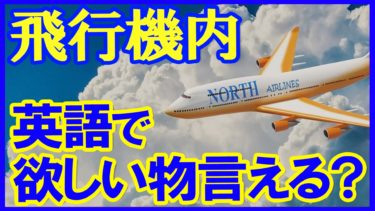 【YouTube新作動画】飛行機内での英会話☆客室乗務員とのやりとり定番フレーズ